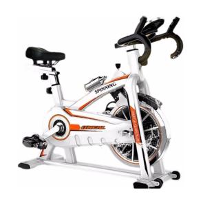 Bicicleta Spinning TP1100